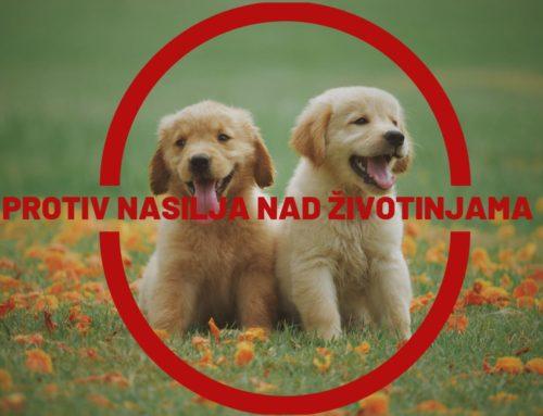 STOP nasilju nad životinjama