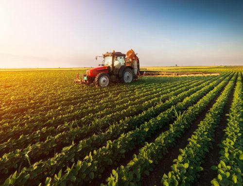 Otvoren natječaj za izbor najboljeg mladog poljoprivrednika ili poljoprivrednicu u Hrvatskoj