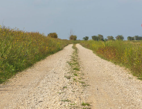 Našoj Općini 300.000,00 kn za sanaciju nerazvrstanih cesta i izgradnju potpornih zidova